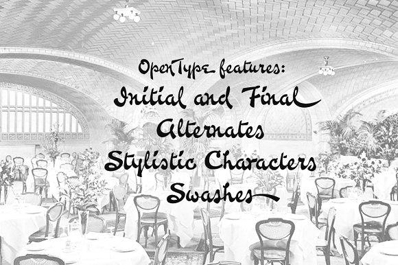 Waiter Script Font