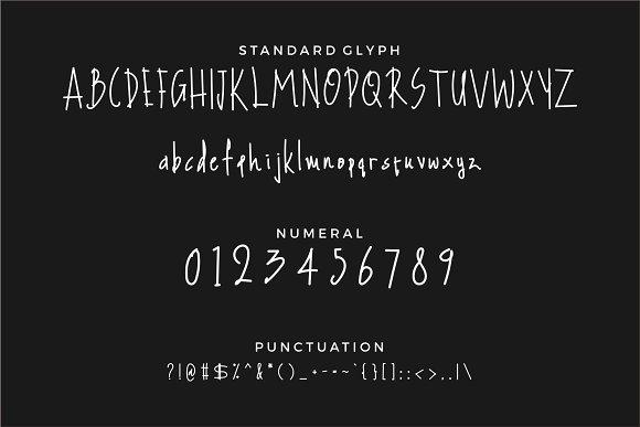 Little Spring Handwriting Font