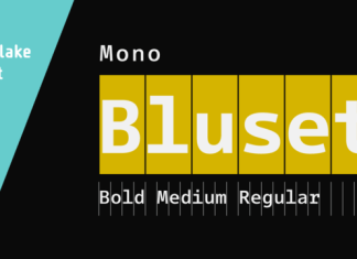 Bluset Now Mono Family