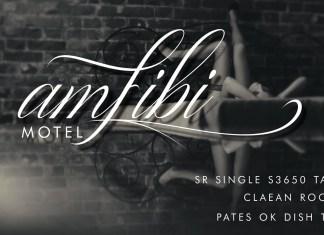 Fontbundles - Amfibi Script