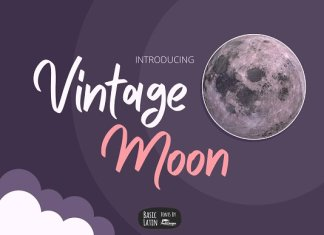 Vintage Moon Marker Font Script