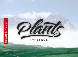 Plants Script Font