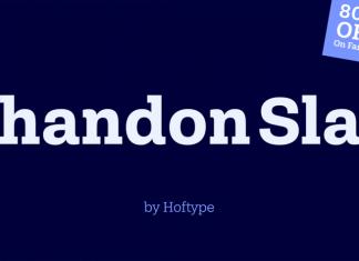 Shandon Slab Font Family