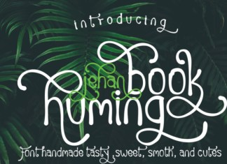 Huming Book Font