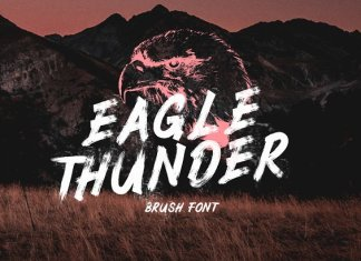 Eagle Thunder - Brush