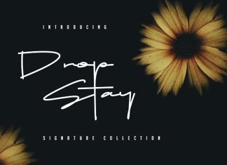 Drop Stay Signature Font