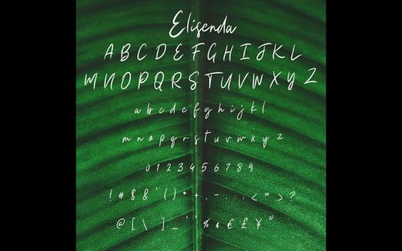 Elisenda Font