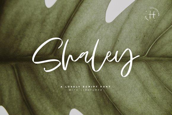 SHALEY SCRIPT FONT
