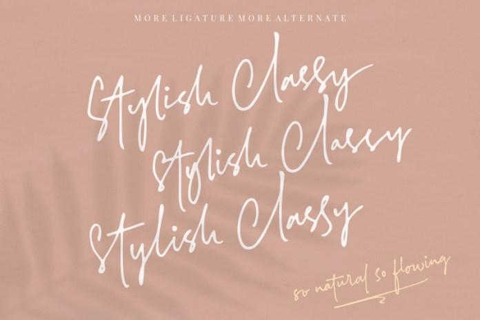 Stylish Classy Font Family