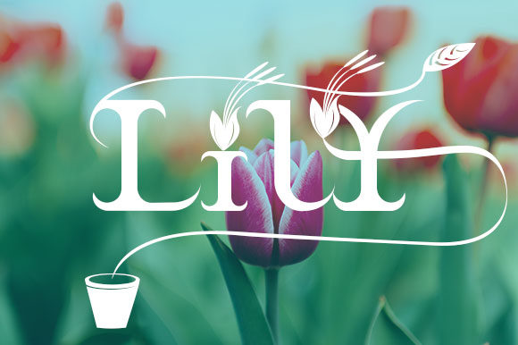 Braxica Lily Font