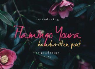 Flamingo Youra Font