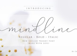 Mindline Script Font Family