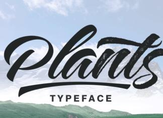 Plants Font Family