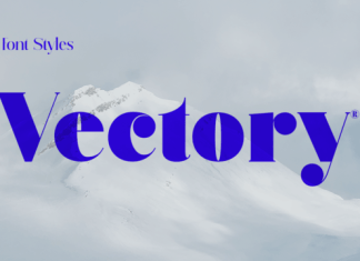 Vectory Font Family
