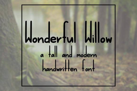 Wonderful Willow
