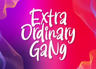 Extra Ordinary Gang