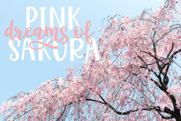 Hello Sakura Font