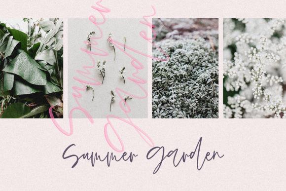 Spring Blush Font