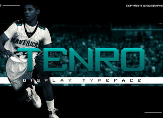 Tenro Display Font