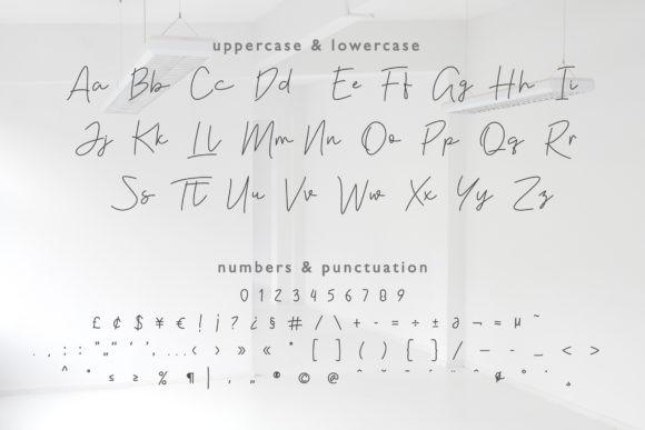 Violia Font