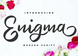 Enigma | Modern Script Font