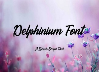 Delphinium Font