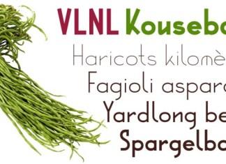 VLNL Kouseband Font