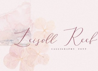 Leisoll Reef Font