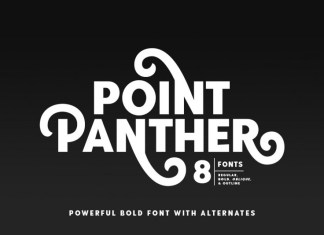 Point Panther Font