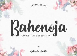 Bahenoja Font