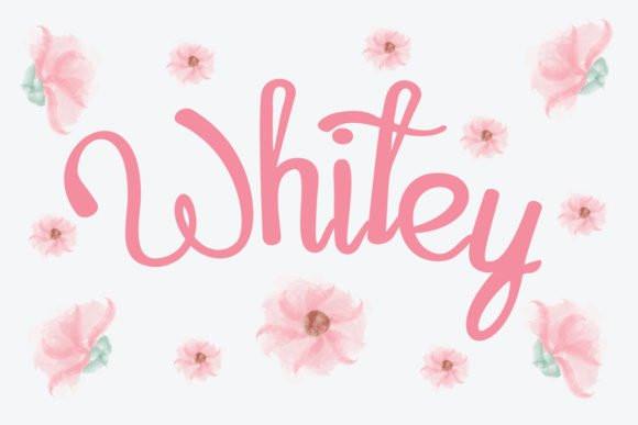 8 Festive Holiday Fonts