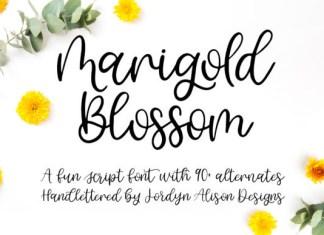 Marigold Blossom Font