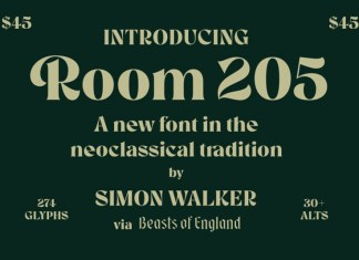 Room 205 Font