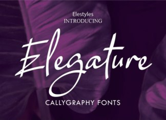 Elegature Font