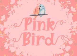 Pink Bird Font