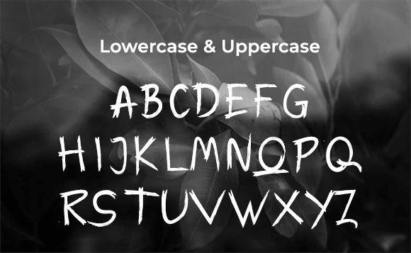 Warox Font