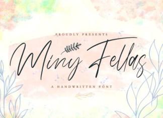 Miny Fellas Font