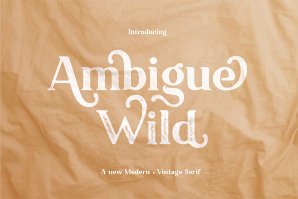 Ambigue Wild Font