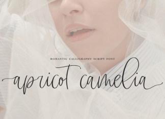 Apricot Camelia Font