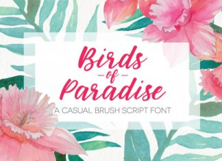 Birds of Paradies Font