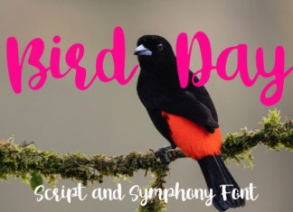 Bird Day Font
