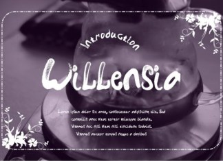 Willensia Font