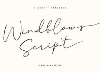 Windblows Script Typeface