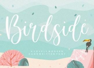 Birdside Font