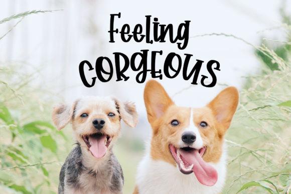 Corgi Puppy Font