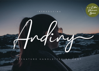 Andiny Font