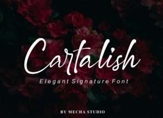 Cartalish Font