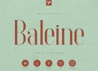 Baleine Font