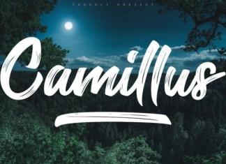 Camillus Font