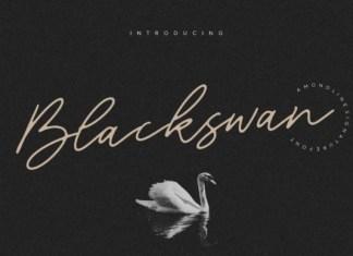 Blackswan Font